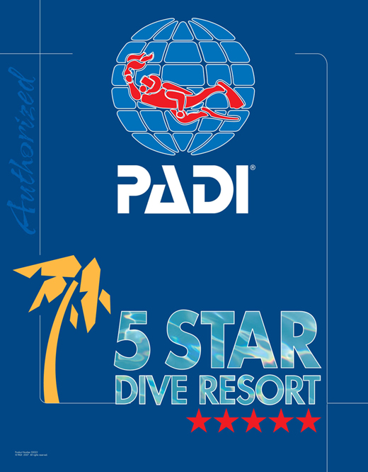 PADI 5 STAR RESORT IN SHARM EL SHEIKH