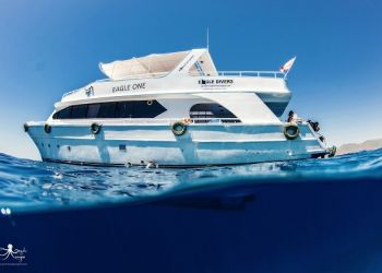 Friends with Benefits - diving deals
