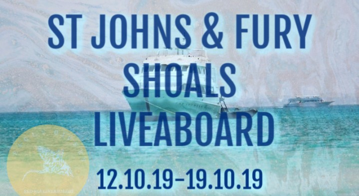 Southern Red Sea Liveaboard - St Johns & Fury Shoals